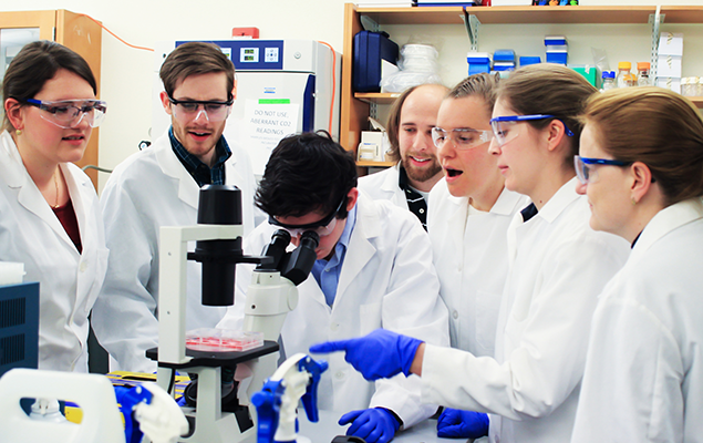 Department of Biomedical Engineering establishes joint ...