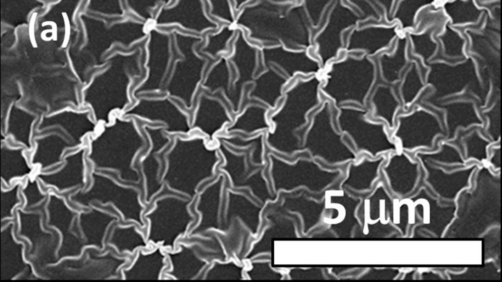 High-resolution SEM shows microstructure of boron-doped Q-carbon. Image courtesy of Jay Narayan.