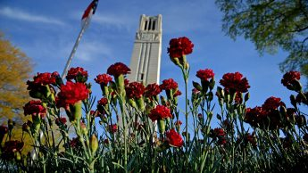 Memorial Bell Tower and spring flowers