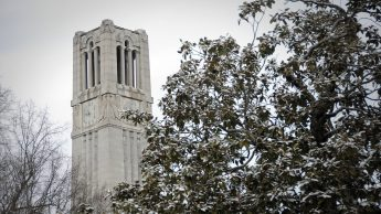 Memorial Belltower and magnolia on a snowy Feb. day.