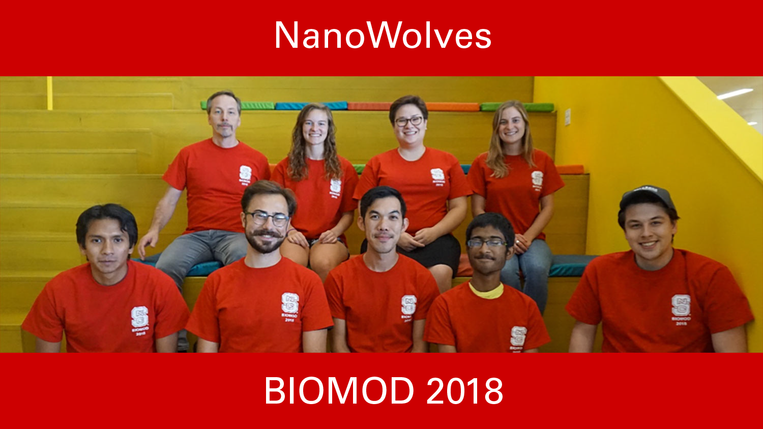 NanoWolves, Biomod 2018