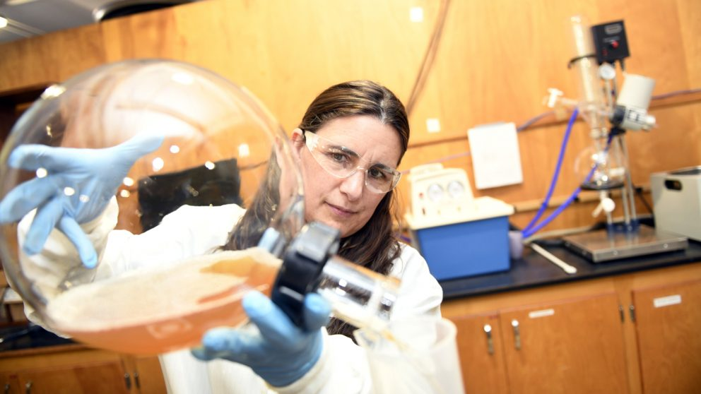 CALS BAE nontraditional student Alison Deviney pours substances from a giant glass beaker.