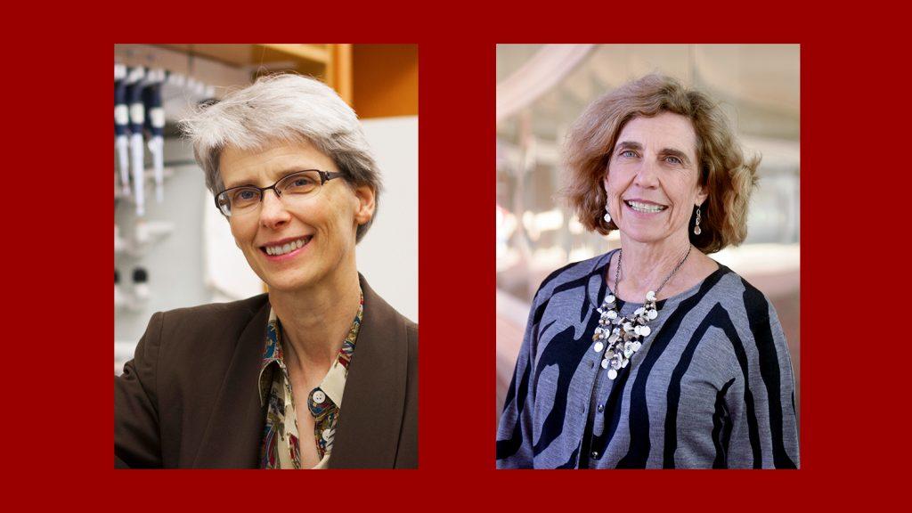 Kenan Distinguished Professor Nancy Allbritton and Lampe Distinguished Professor Frances Ligler